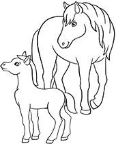 konie.png