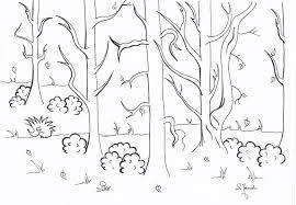 drzewa.png