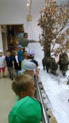 Galeria Izba leśn.żabki