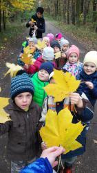 Galeria Nasze spacery jesienią