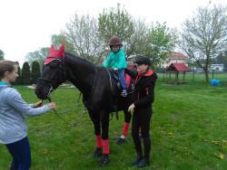 Galeria jazda na koniu