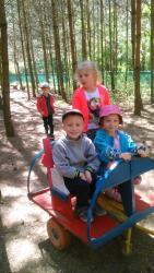 Galeria biedronki w stumilowym lesie