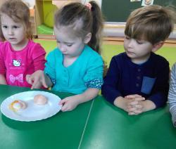 Galeria Eksperymenty z jajem