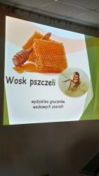 Galeria Pszczelarz