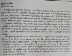 Galeria 14.04 Biedronki