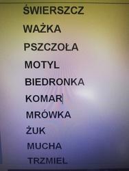 Galeria Środa 13 maja 2020 u Kotków