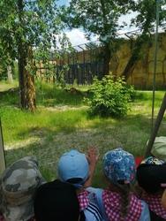Galeria zoo
