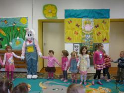 Galeria zajaczek